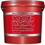 whey protein professional proteina concentrata a rapido rilascio arricchita di composti anabolici