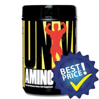 amino 2700 350cpr universal nutrition