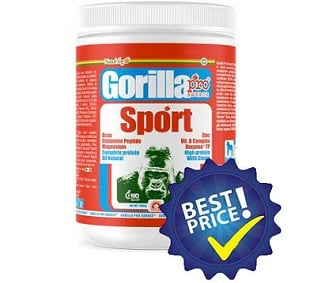 gorilla sport pro source proteina da quattro fonti vegetali realizzata per vegani