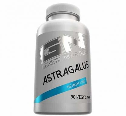 astragalo estratto di radice epatoprotettore, antiossidante e adattogeno