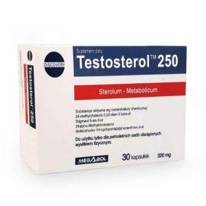 testosterol 250 anabolizzante naturale per massa e libido contiene steroli vegetali e fillochinoni